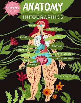 Anatomie medische infographics lay-out met vrouwen organen en systemen van lichaamsvitaliteit vlakke afbeelding
