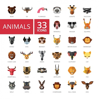Animal iconen collectie
