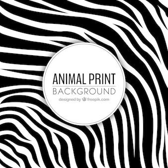 Animal print achtergrond