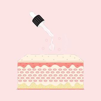 Animatie serum verjonging van de huidcel