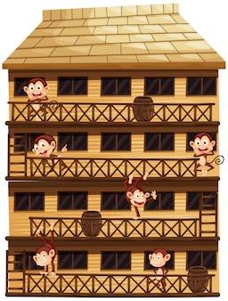 Apen op verschillende verdiepingen van het huis