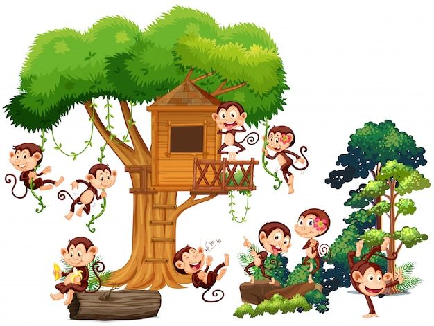 Apen spelen en klimmen de boomhut op