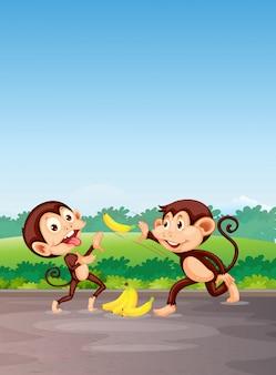Apen spelen met banaan
