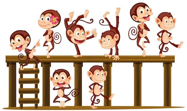 Apen spelen op het houten niveau