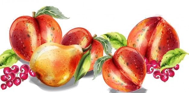 Appel, peer en perzik aquarel set. kleurrijke vruchten gedetailleerde geschilderde stijl