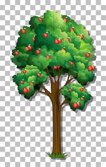 Appelboom op transparante achtergrond