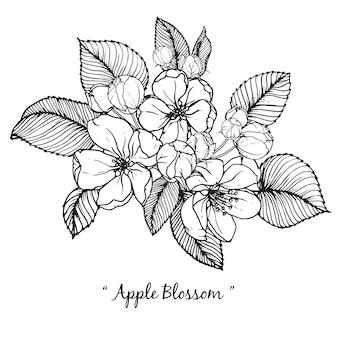 Apple bloesem bloementekeningen
