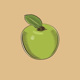 Apple in vintage stijl. gekleurde vectorillustratie