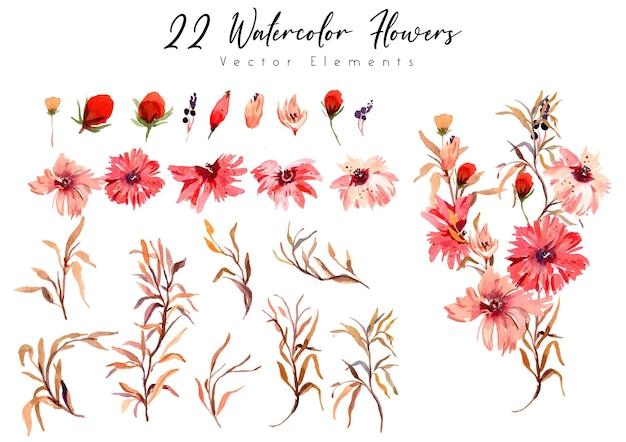 Aquarel bloem dianthus rode elementen