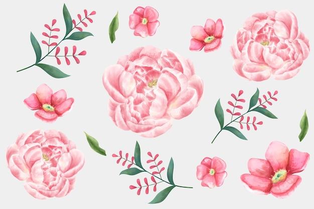 Aquarel bloem set