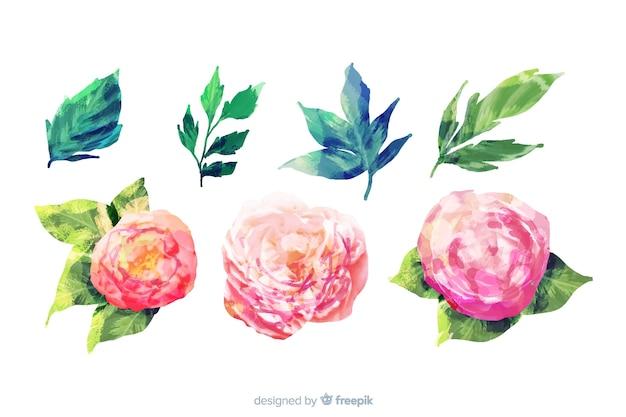 Aquarel bloemen en bladeren