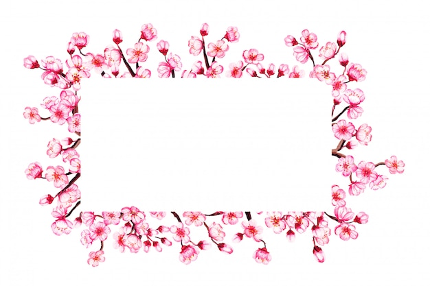 Aquarel bloemen sakura frame. lente kersenbloesem, geïsoleerd op wit