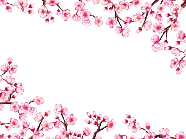 Aquarel bloemen sakura frame. lente kersenbloesem grens, geïsoleerd op wit.