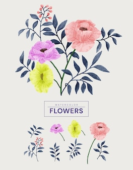 Aquarel bloemen set.