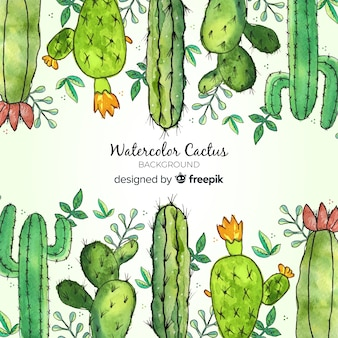 Aquarel cactus achtergrond