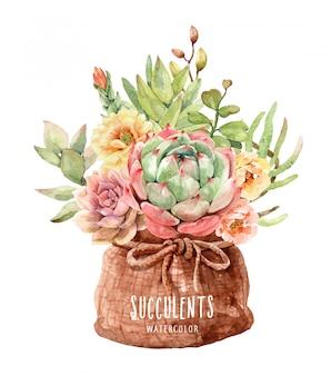 Aquarel cactussen en vetplanten in een zak met potzakken