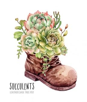 Aquarel cactussen en vetplanten in lederen laars bloempot