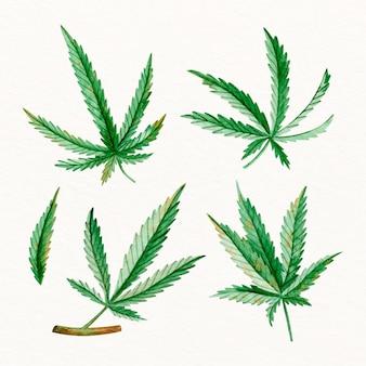 Aquarel cannabis bladeren collectie