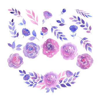 Aquarel collectie van paarse en roze rozen, twijgen en bladeren