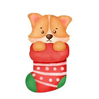 Aquarel cute cartoon corgi hond met sok voor kerstkaart.