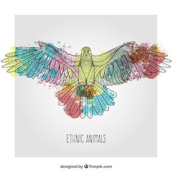 Aquarel eagle