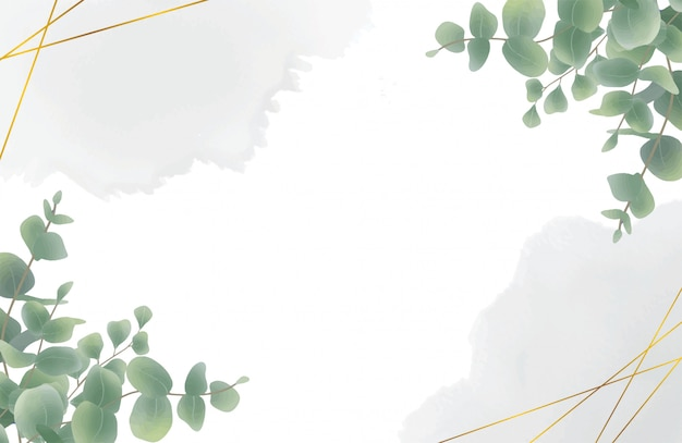Aquarel eucalyptus blad achtergrond