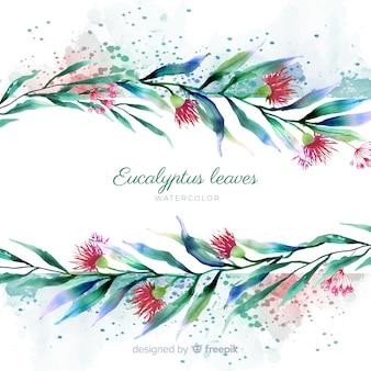 Aquarel eucalyptus bladeren