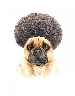 Aquarel franse bulldog met afro haar.