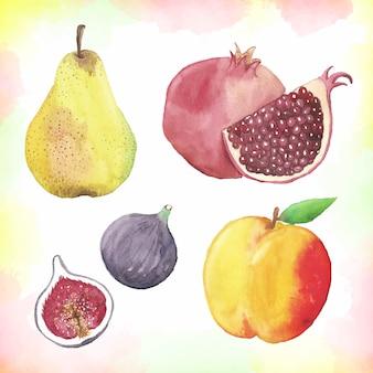 Aquarel fruit collectie