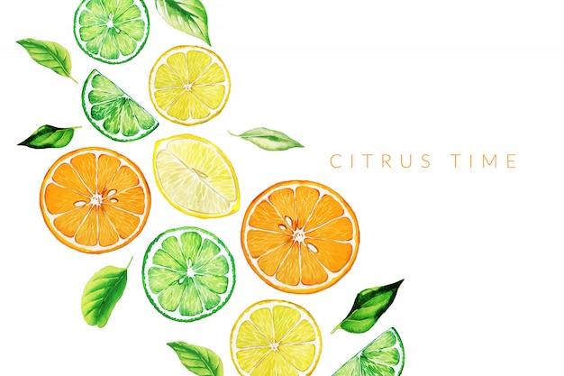 Aquarel fruit, platte hand getrokken achtergrond