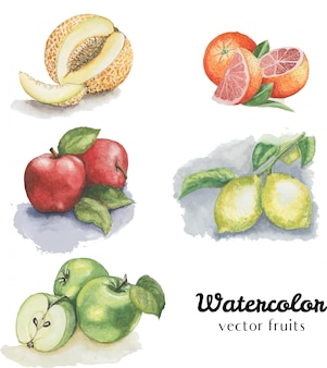 Aquarel fruit