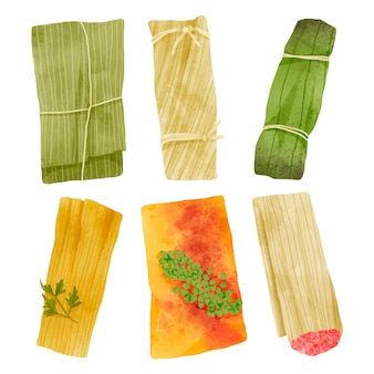 Aquarel geschilderde tamales collectie