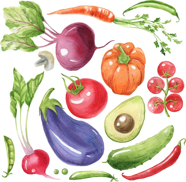 Aquarel groenten. aubergine, tomaat, paprika, avocado, wortel. eco-voedsel, gezond voedsel. veganistische gerechten. handgeschilderde illustratie.