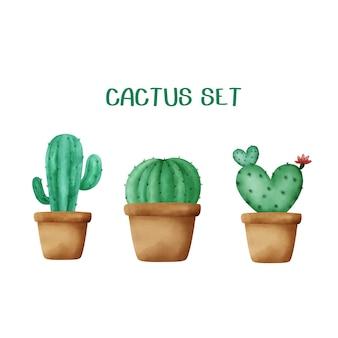 Aquarel hand getrokken cactus set.