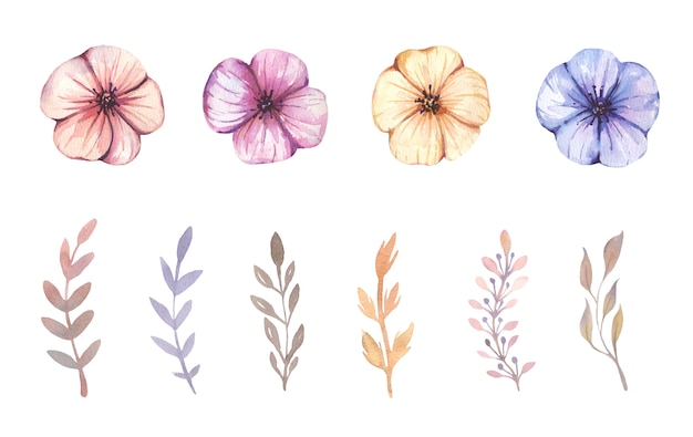 Aquarel handgeschilderde boho bloemen.