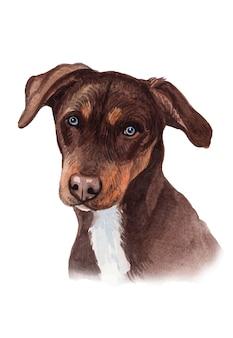 Aquarel handgeschilderde hond portret illustratie