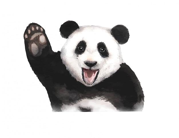 Aquarel handgeschilderde panda beer illustratie