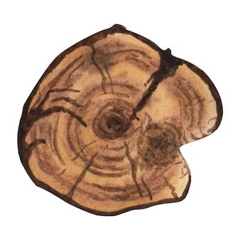 Aquarel houtstructuur houten plak