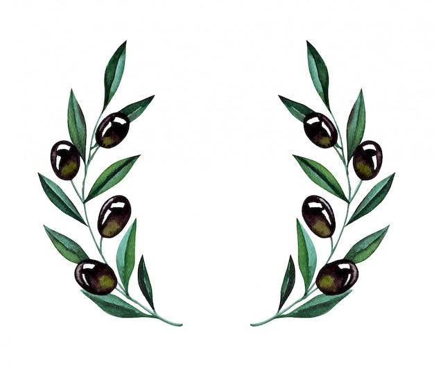 Aquarel illustratie met olijftakken en krans. bloemenillustratie voor stationair huwelijk, groeten, behang, mode en uitnodigingen.
