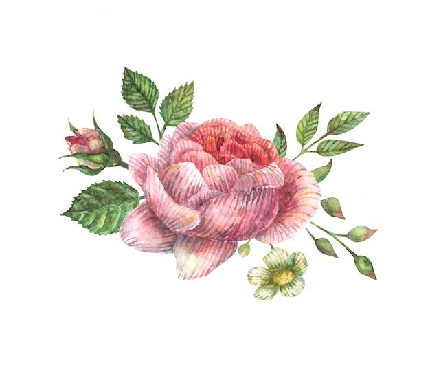 Aquarel illustratie van een boeket van roze pioenroos, knoppen, bladeren, takken en andere veldkruiden.