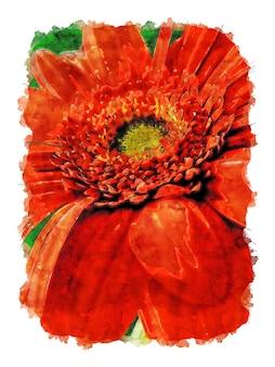Aquarel illustratie van oranje bloem