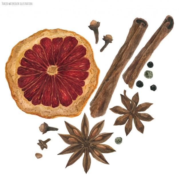 Aquarel ingrediënten voor winter gekruide wijn