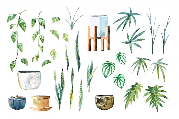 Aquarel kamerplanten (pothos, snake plant, peperomia, lady palm en xanadu) regelen geïsoleerde set op witte achtergrond illustratie