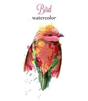 Aquarel kleine vogel
