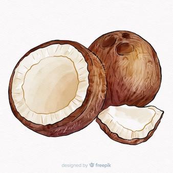 Aquarel kokosnoot achtergrond