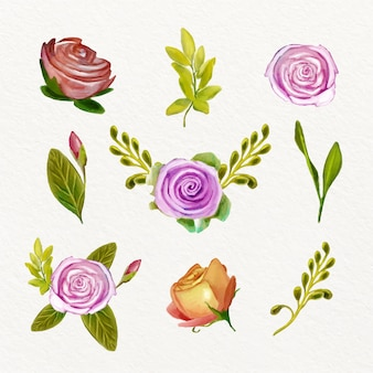 Aquarel lente bloem collectie concept