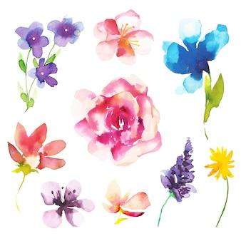 Aquarel lente bloemencollectie