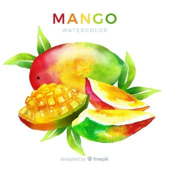 Aquarel mango achtergrond