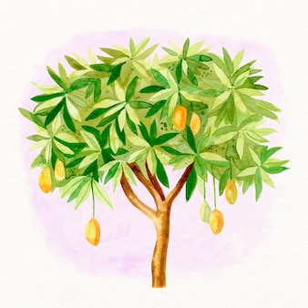 Aquarel mangoboom illustratie
