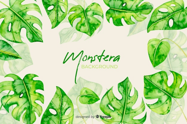Aquarel monstera bladeren